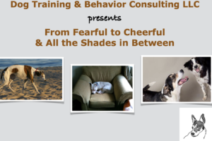 From Fearful to Cheerful and all the Shades in Between  (2 day-event Zoom Presentation)